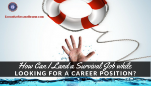 How Can I Land a Survival Job while Looking for a Career Position